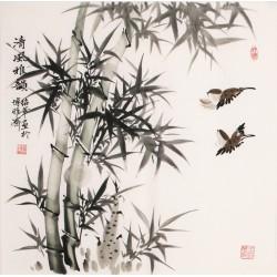 Bamboo - CNAG005643