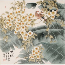 Basho - CNAG005654