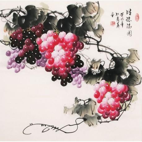 Grapes - CNAG005661