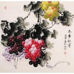 Grapes - CNAG005671