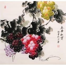 Grapes - CNAG005672