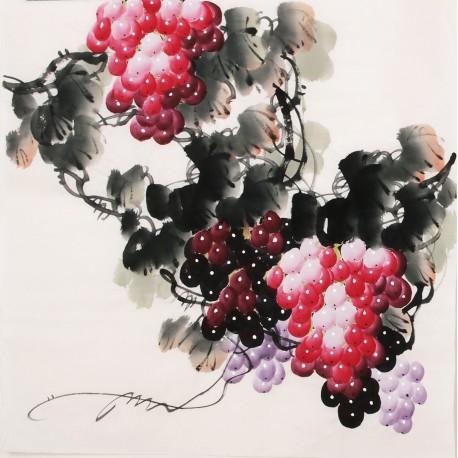 Grapes - CNAG005673