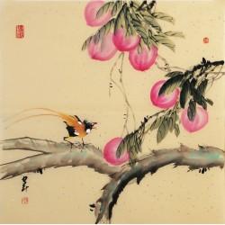 Peach Blossom - CNAG005715