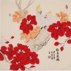 Parrot - CNAG005720
