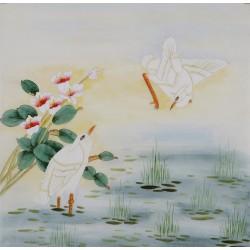 Egret - CNAG005773