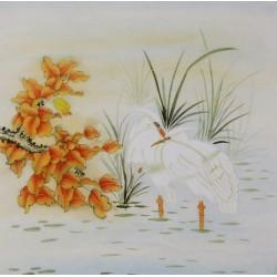 Egret - CNAG005779