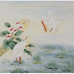 Egret - CNAG005781