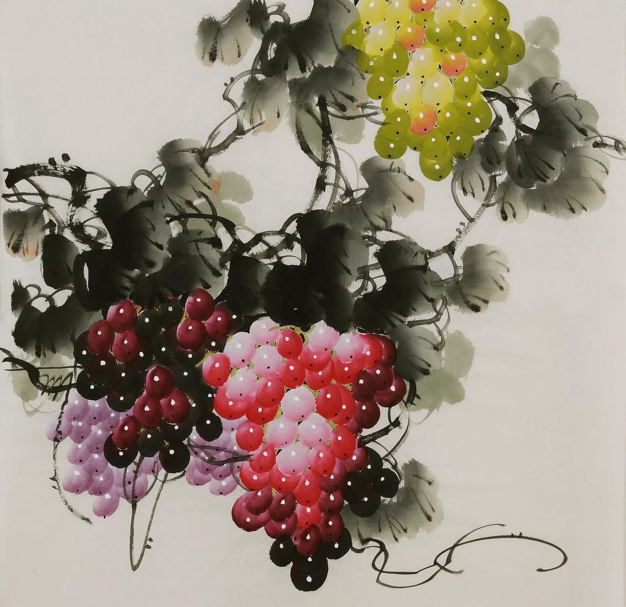 Grapes - CNAG005838