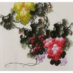 Grapes - CNAG005839