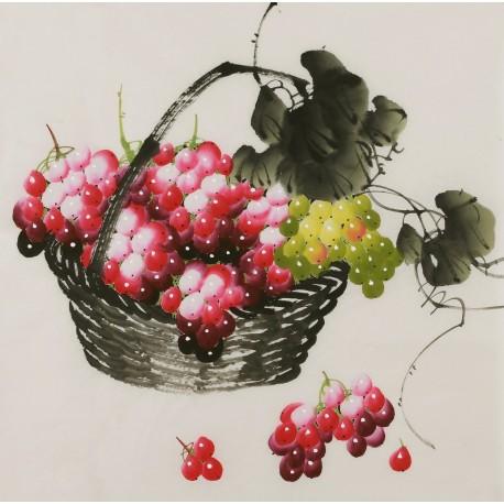 Grapes - CNAG005847