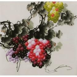 Grapes - CNAG005854