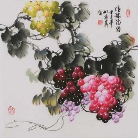 Grapes - CNAG005868