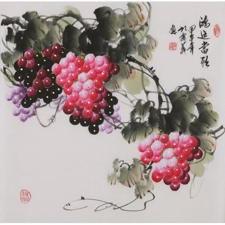 Grapes - CNAG005884