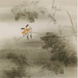 Lotus - CNAG005973