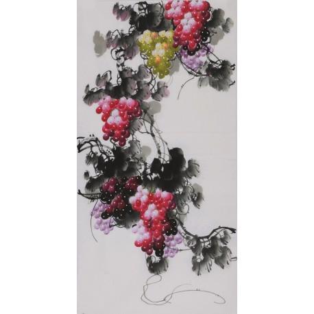 Grapes - CNAG000604