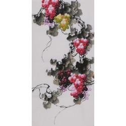 Grapes - CNAG000606