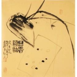 Orchid - CNAG006134