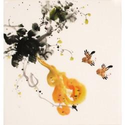 Gourd - CNAG006201