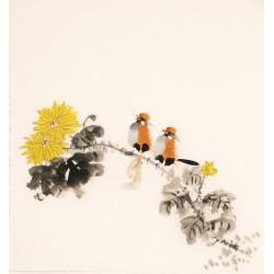 Chrysanthemum - CNAG006203