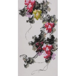 Grapes - CNAG000622