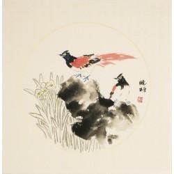 Paradise Flycatcher - CNAG006225