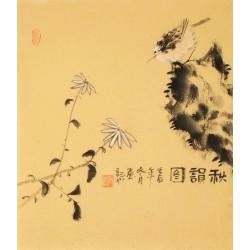 Chrysanthemum - CNAG006232