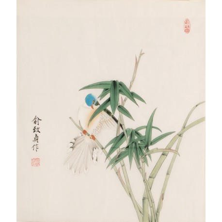 Bamboo - CNAG006248