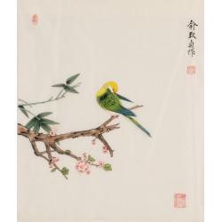 Bamboo - CNAG006251