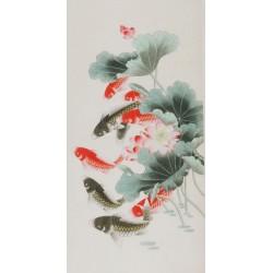 Fish - CNAG000626