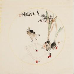 Narcissus - CNAG006283