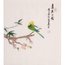Parrot - CNAG006301
