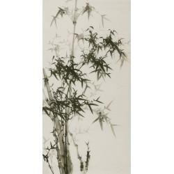 Ink Bamboo - CNAG000637