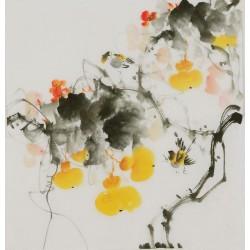 Gourd - CNAG006381