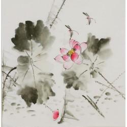 Lotus - CNAG006382