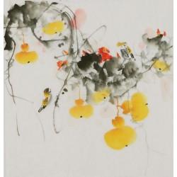 Gourd - CNAG006399