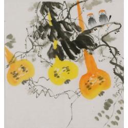 Gourd - CNAG006413