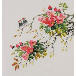 Hibiscus - CNAG006414