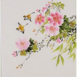 Hibiscus - CNAG006418