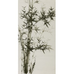 Ink Bamboo - CNAG000643