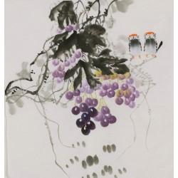 Grapes - CNAG006429