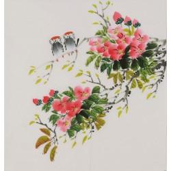 Hibiscus - CNAG006430