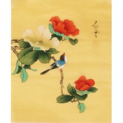 Hibiscus - CNAG006499
