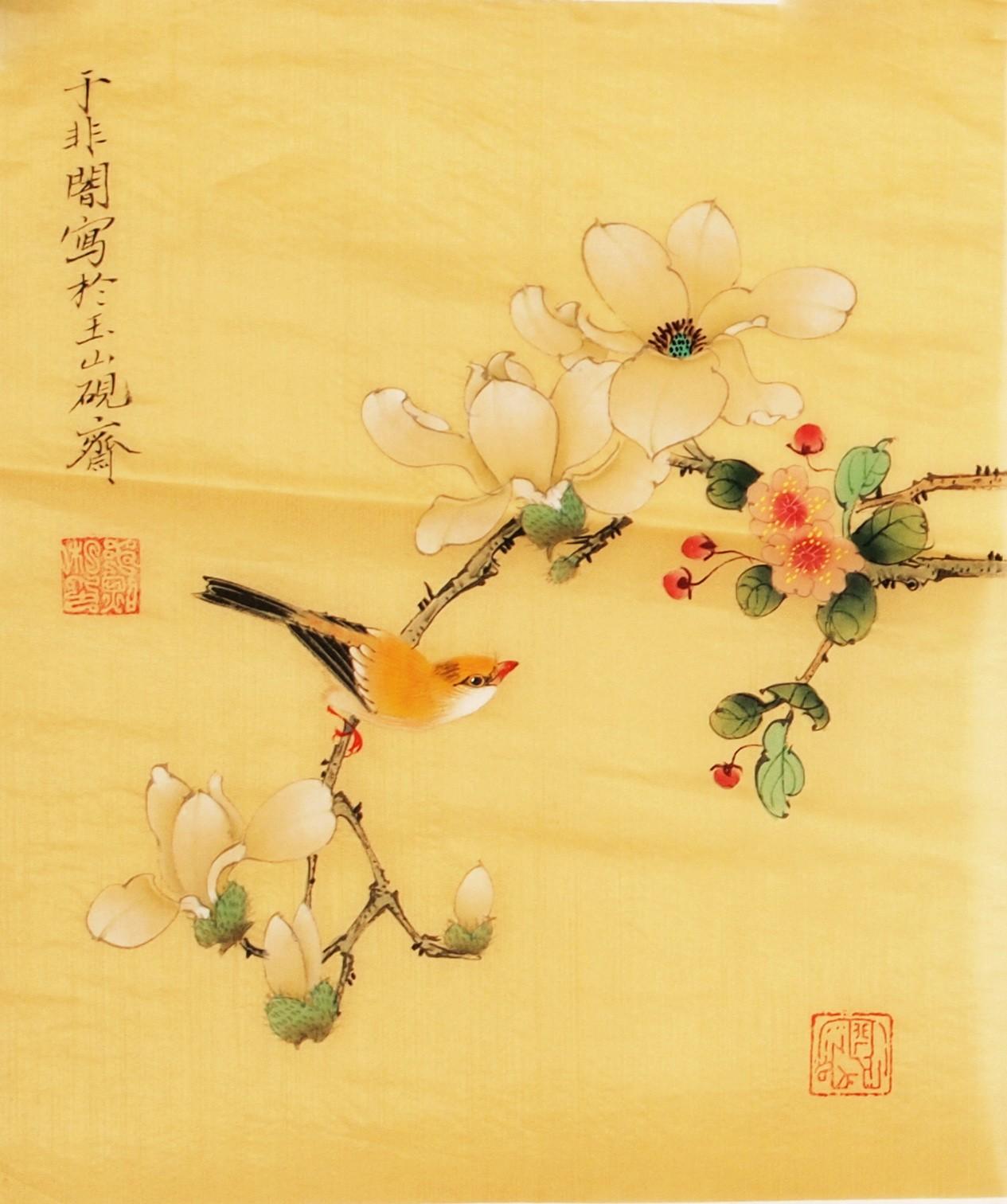 Orchid - CNAG006508