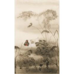Ducks - CNAG000652