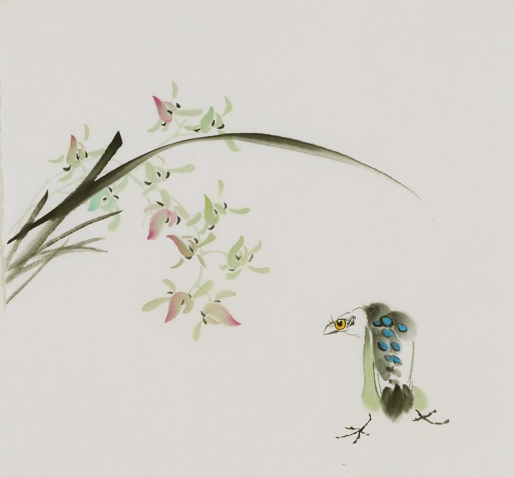 Orchid - CNAG006549