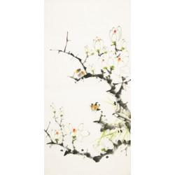 Orchid - CNAG000659
