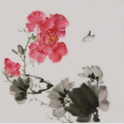 Hibiscus - CNAG006668
