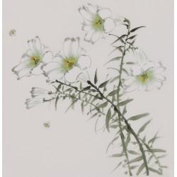 Bees - CNAG006681