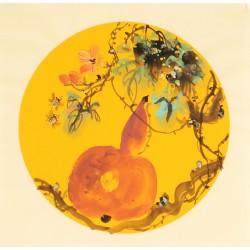 Gourd - CNAG006759