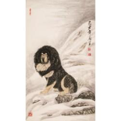 Dog - CNAG000007